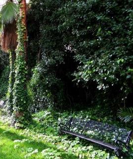 jardin_casa_pedrilla