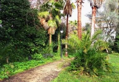 jardin_casa_pedrilla_2