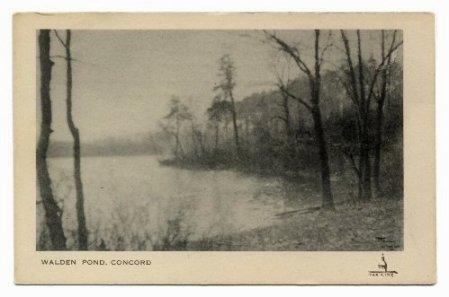 concord_walden-pond