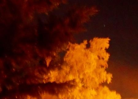chopo_noche