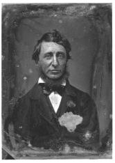 Henry_David_Thoreau_1856
