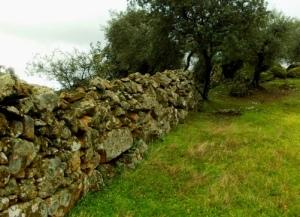 pared_de_piedra