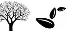 ramas y grano
