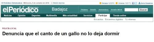 gallo-2